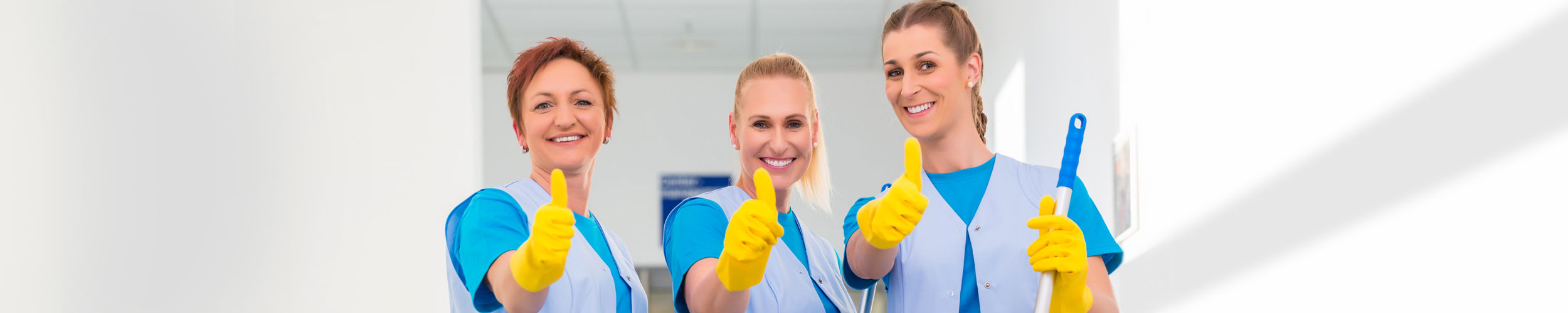 Great-House-Cleaners